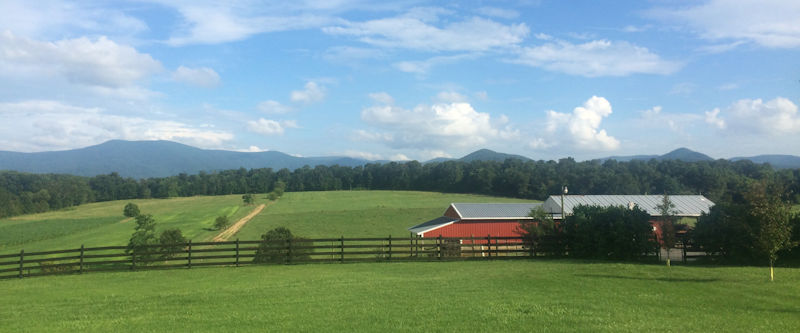 View from Piney Hill Bed & Breakfast and Cottages
