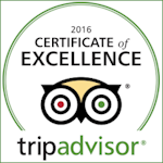 2016 Certificate of Excellence / Read Reviews