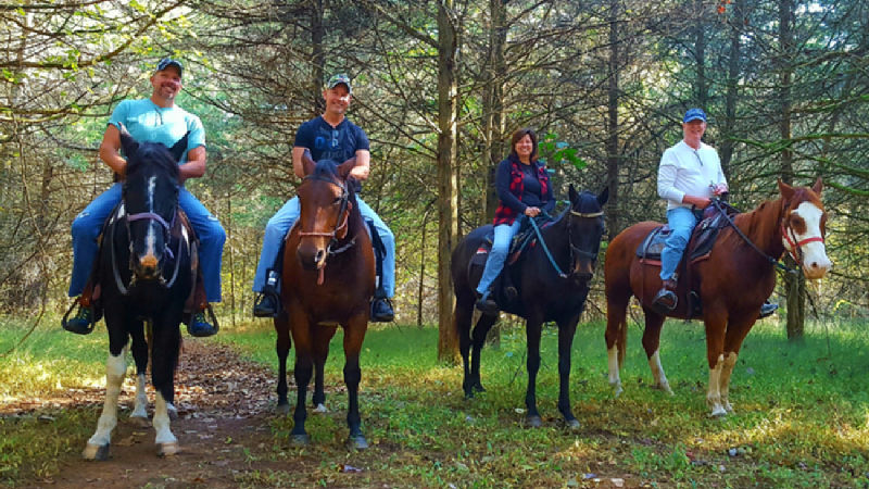Enjoy Horseback riding near Piney Hill Bed & Breakfast and Cottages