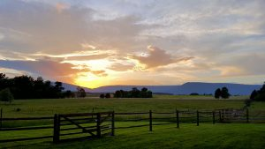 Experience some of the Best Views in Luray, VA at Piney Hill Bed & Breakfast and Cottages.